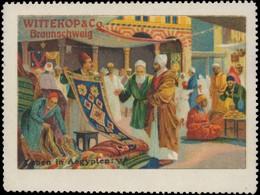 Braunschweig: Leben In Ägypten VI Reklamemarke - Erinnophilie