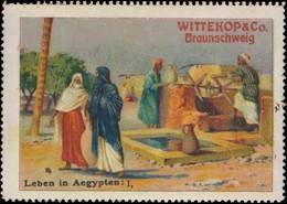 Braunschweig: Leben In Ägypten I Reklamemarke - Erinnophilie