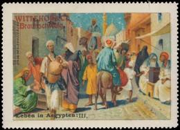 Braunschweig: Leben In Ägypten III Reklamemarke - Erinnophilie