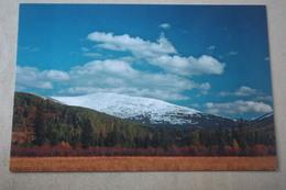 Mountains Of Russia. Altai., UNESCO - Modern Postcard - Russia