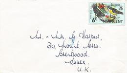 St Vincent 1972 Kingstown Bananaquit Coereba Flaveola Warbler Bird Cover - St.-Vincent En De Grenadines