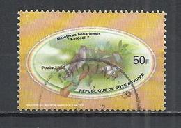 IVORY COAST 2004 - SHINY COWBIRD (MOLOTHRUS BONANENSIS) - POSTALLY USED OBLITERE GESTEMPELT USADO - Côte D'Ivoire (1960-...)