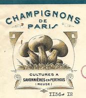 2 Factures 1949 / 55 SAVONNIERES En PERTHOIS / Champignonnières De La Meuse / Champignons De Paris - France