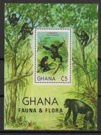 Ghana - 1981 - Bloc Feuillet BF N°Yv. 92 - Singes / Monkeys  - Neuf Luxe ** / MNH / Postfrisch - Ghana (1957-...)