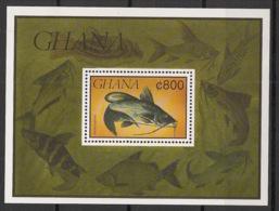 Ghana - 1991 - Bloc Feuillet BF N°Yv. 170 - Poissons - Neuf Luxe ** / MNH / Postfrisch - Ghana (1957-...)