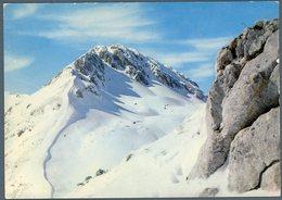 °°° Cartolina N. 26 Terminillo Vetta Sassatelli Viaggiata °°° - Rieti