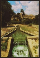 Jericho  -  Irrigation Channel From The Spring Of Elisha  -  Ansichtskarte Ca.1970   (10762) - Palästina