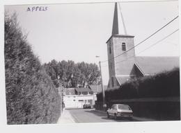 Dendermonde - Deelgemeente Appels - Dendermonde