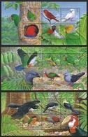 Salomoninseln 2005 - Mi-Nr. Block 90-92 ** - MNH - Vögel / Birds - Salomoninseln (Salomonen 1978-...)