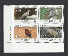 Macao Macau 2011 Yvert 1544/1547 ** Oiseaux Birds Uccelli Pajaros Vogel Wwf - Superbes - Unused Stamps