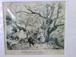 A Marlotte (Foret De Fontainbleau), - Ohne Zuordnung