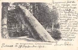 PIE.LOT CH -19-3901 : LA PIERRE DE SAINT-SAMSON - Dolmen & Menhirs