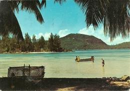 Therese Island (Seychelles) Port Glaud, The Beach, Ile Therese, La Plage - Seychelles