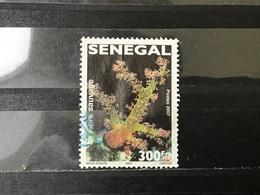 Senegal - Wilde Bloemen (300) 2007 - Senegal (1960-...)