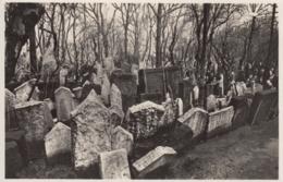 AK - Judaika - PRAG (Josefov) - Grabmal-Gruppe Am Alten Jüdischen Friedhof - Tschechische Republik