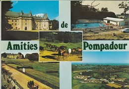 """19----Amities De POMPADOUR---"""" Cité Du Cheval """"-la Piscine-vue Générale-le Champ De Course-le Château--voir 2 Scans - Frankreich"""