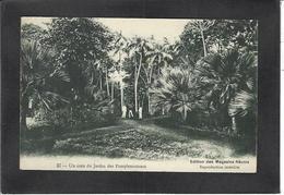 CPA Ile Maurice Mauritius écrite - Maurice