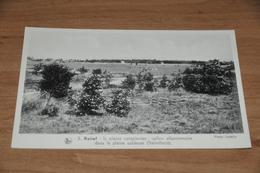 9580-      LES PAYSAGES BELGES, LA CAMPINE, KALMTHOUT - Kalmthout