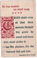 'In Due Season We Shall Reap....' (D. Hiilson)  - 1908 - (Brooklyn, N.Y.) - Brooklyn