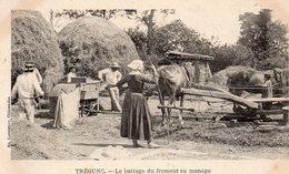 TREGUNC (29) Battage Du Froment Au Manège - Trégunc