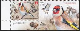 Belarus 2018 - Bird Of The Year. European Goldfinch, MNH. Biélorussie/Weissrussland. BirdLife, Uccello Vogel Oiseau - Uccelli Canterini Ed Arboricoli