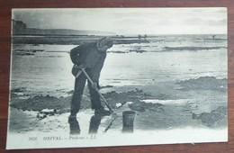 [ 80 - ONIVAL ] PÊCHEUR Sur La Plage (coquillages). - Fischerei