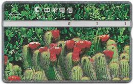 Taiwan - Chunghwa Telecom - L&G - Cactus 1 - 977G - 1999, 100U, Used - Taiwán (Formosa)