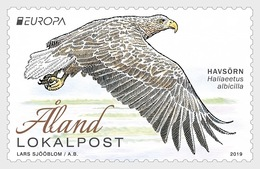 Aland - Postfris / MNH - Europa, Vogels 2019 - Aland