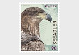 Oostenrijk / Austria - Postfris / MNH - Europa, Vogels 2019 - 2011-.... Ongebruikt