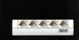 Belgie 3199 Buzin 0.02€ 18/2/2005 Paar Velnummer Drukdatum Datumstrook Bande Datée Vogels Birds  Velnr 95570 - 1985-.. Oiseaux (Buzin)