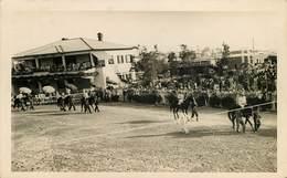 Sports - Hippisme - Hippodrome - Champ De Courses - Carte Photo - Pays A Identifier - état - Horse Show