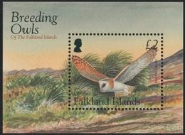 Falkland 2004 - Mi-Nr. Block 31 ** - MNH - Eulen / Owls - Falklandinseln