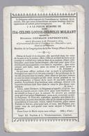 DOODSPRENTJE MOLHANT DEPOORTERE ° MESSINES 1879 + COURTRAI 1903 - Images Religieuses
