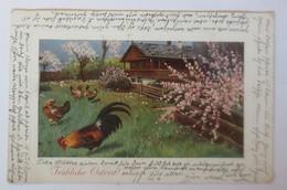 Ostern, Bauernhof, Hahn, Hühner, 1920 ♥  (9051) - Ostern