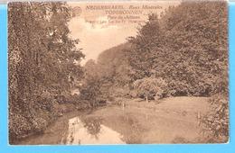 Nederbrakel-Brakel-1927-Eaux Minérales-Topbronnen-Parc Du Château-Timbre COB 200 Roi Albert 1er Type Houyoux-rare - Brakel