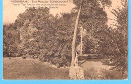 Nederbrakel-Brakel-1925-Eaux Minérales-Topbronnen-Parc-Protection Des Sources-Timbre COB 195 Roi Albert 1er Type Houyoux - Brakel