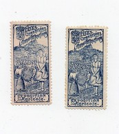 Erinnophilie Vignette Exposition Agricole Arlon Belgique 1904 Arlon-attractions (2 Vignettes) - Erinofilia