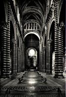 SIENA - Opera Metropolitana - Duomo - Interno - Siena