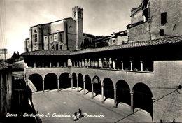 SIENA - Santuario S. Caterina E S. Domenico - Siena