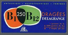 Buvard Dragées Delagrange B1 250 B12 Antalgique Neurotrophique - Tonique - Produits Pharmaceutiques