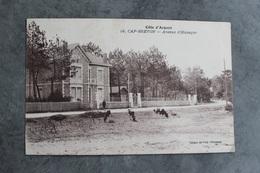 40130 - Capbreton - Avenue D'Hossegor - 859CP01 - Capbreton