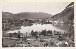 Ain : LA CLUSE : Les Bords Du Lac ( C.p.s.m. Photo Vérit. ) - Autres Communes