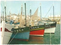 29 - Lesconil - La Flottille - éd. Cim N° A. Ci. 18 (circ. 1969) - [Plobannalec-Lesconil] - Plobannalec-Lesconil