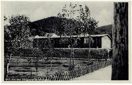 RAD Abteilung BAD KÖNIGSWART - Sudetengau - 1943 - Sudeten