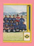 Figurina Panini 1988-89 - Verona - Trading Cards