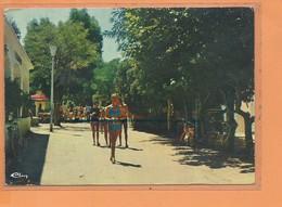CPM - PORQUEROLLES - La Place La Lycastre - Porquerolles