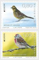 Luxemburg 2019  EUROPA NATIONAL BIRDS  EUROPA NATIONALE VOGELS   SET VAN 2                             Postfris/mnh/neuf - Luxemburg