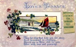 IRELAND - IRISH GREETING CARD WITH ADDED PACKET OF SHAMROCK SEEDS  I-518 - Ireland
