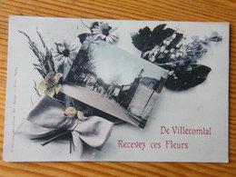 CPA Gers Villecomtal Sur Arros Recevez Des Fleurs 1912 - Autres Communes