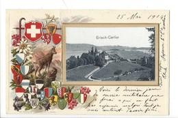 22043 -  Erlach-Cerlier Armoiries Drapeaux Cantons Suisses Et Chamois 1904 Carte En Relief (pli Vertical) - BE Berne